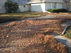 Leaf Cleanup Wichita KS